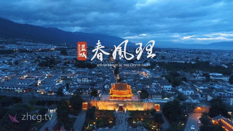 中国第三届广告影片金狮奖2019年获奖作品集