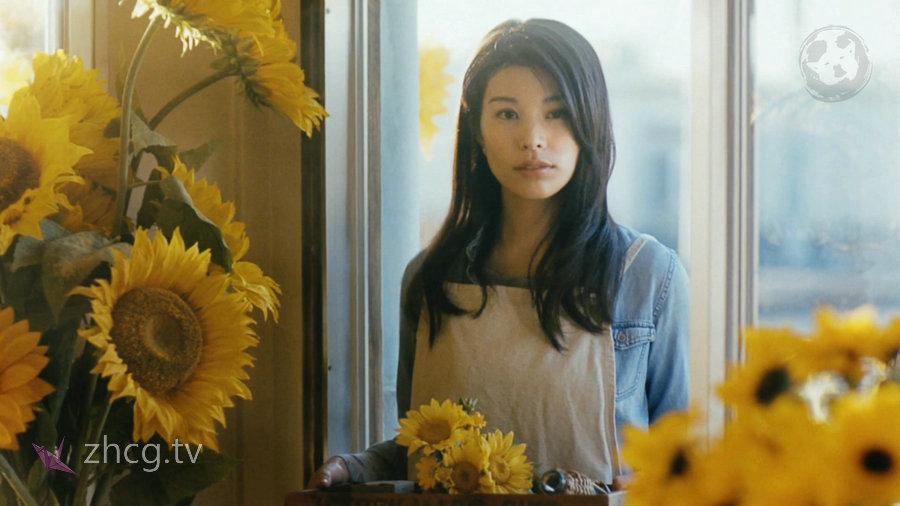 Japanese TV Ads 2018日本2018年年度电视广告第十一弹 4K超清