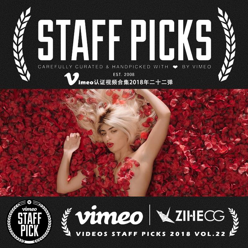 Vimeo STAFF PICKS官方认证创意等视频合集2018年第二十二弹