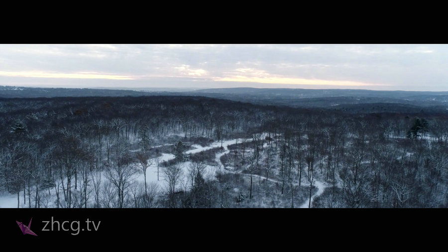 Vimeo STAFF PICKS官方认证创意等视频合集2018年第十一弹