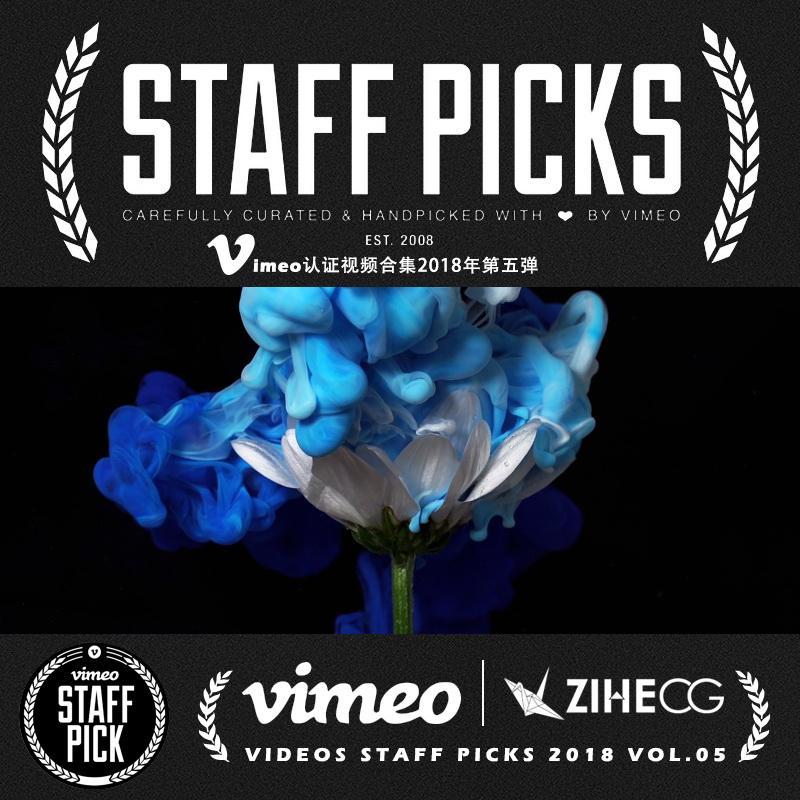 Vimeo STAFF PICKS官方认证创意等视频合集2018年第五弹