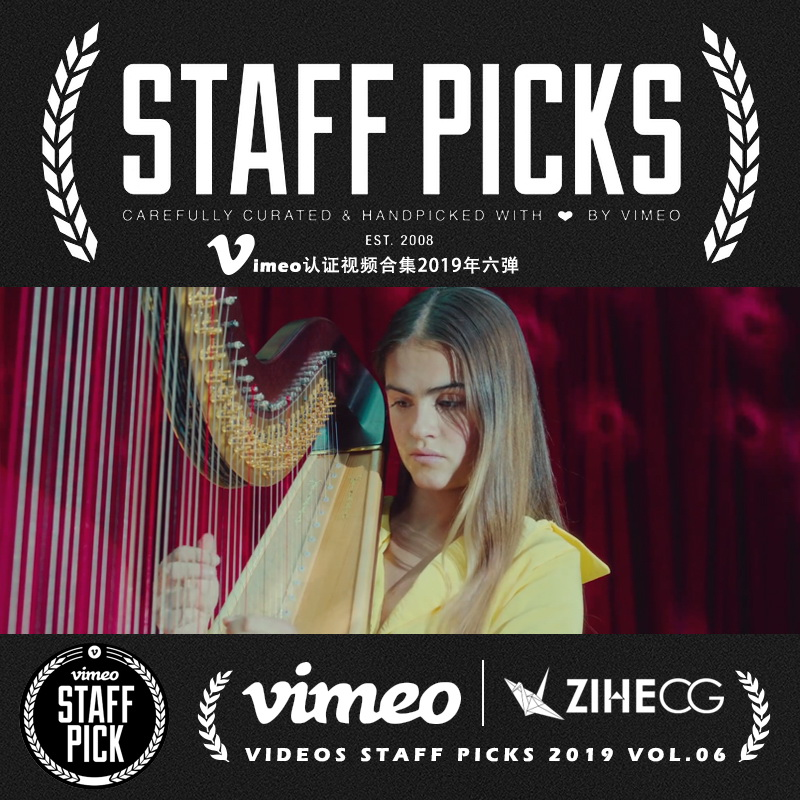 Vimeo STAFF PICKS官方认证创意等视频合集2019年第六弹