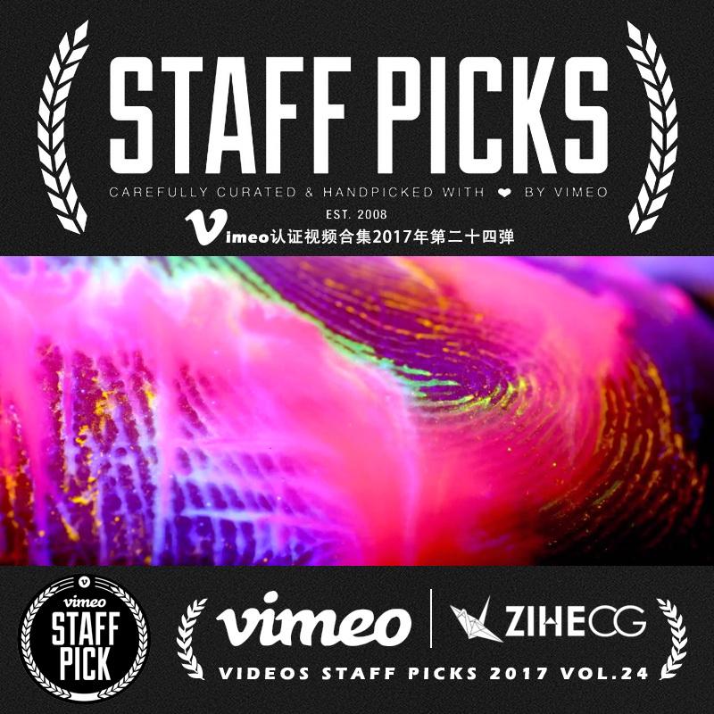 Vimeo STAFF PICKS官方认证创意等视频合集2017年第二十四弹